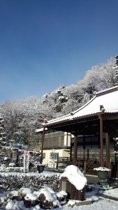 ブログ写真12月 006